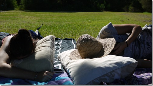 Sunday afternoon naps after a picnic lunch