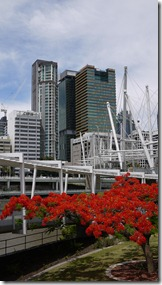 From Kurilpa Bridge Brisbane
