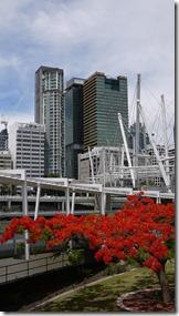 From Kurilpa Bridge Brisbane