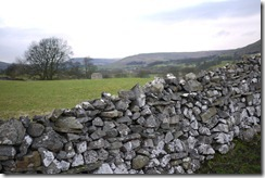 Field and stone wall in Yorkshire Dales National Park, England, UK