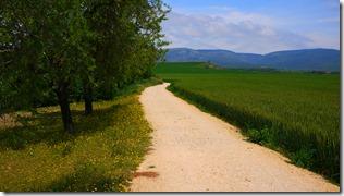 Camino de Santiago - day 1