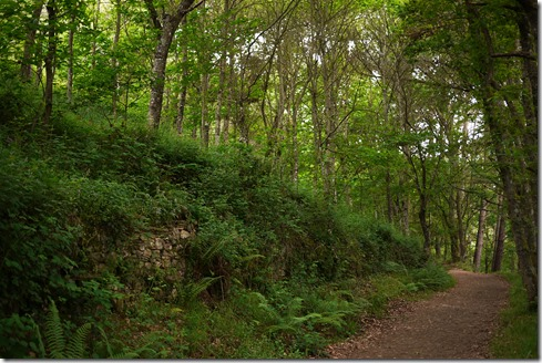 Walking Camino de Santiago from Sarria, Spain