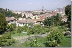 Rose Garden Florence, Tuscany Italy