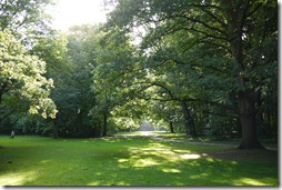 Tiergarten, Berlin - sprawling green