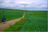 Walking the Camino Spain