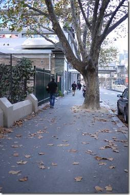 Autumn in Melbourne Victoria Australia